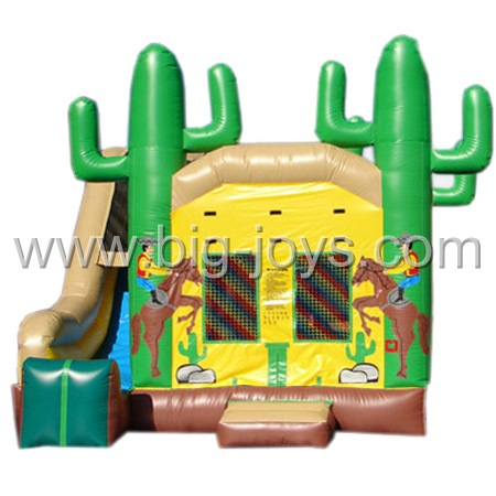 inflatable jumper with slide