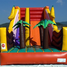 Inflatable Playground Slide, Inflatable Slide Castle