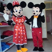 Disney Costume,Cartoon Costume